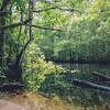 Durbin Creek
