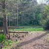 Ravine Gardens State Park, Palatka, FL