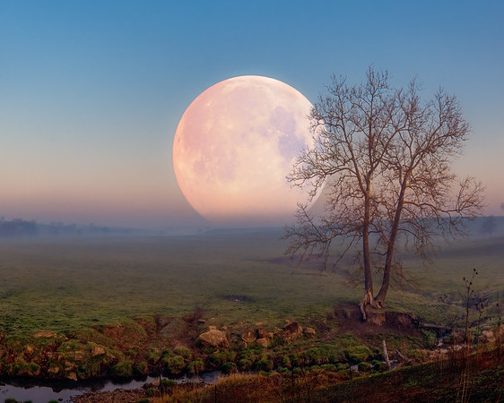Pink Moon Setting