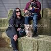 AZ Sheltie Portraits 2018 med-76