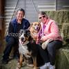 AZ Sheltie Portraits 2018 med-49