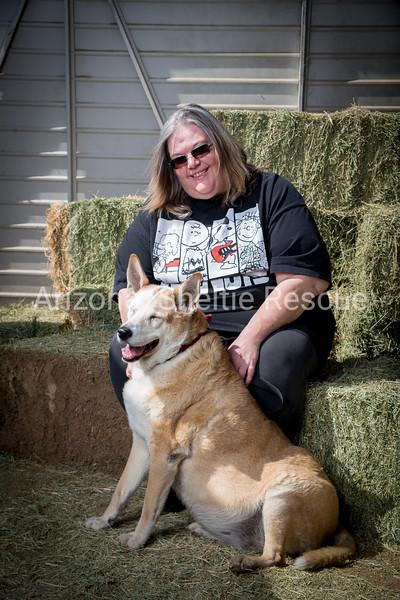 AZ Sheltie Portraits 2018 med-53