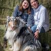 AZ Sheltie Portraits 2018 med-61