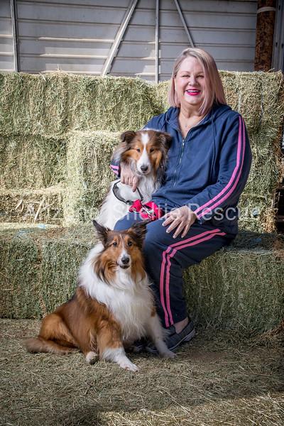 AZ Sheltie Portraits 2018 med-46