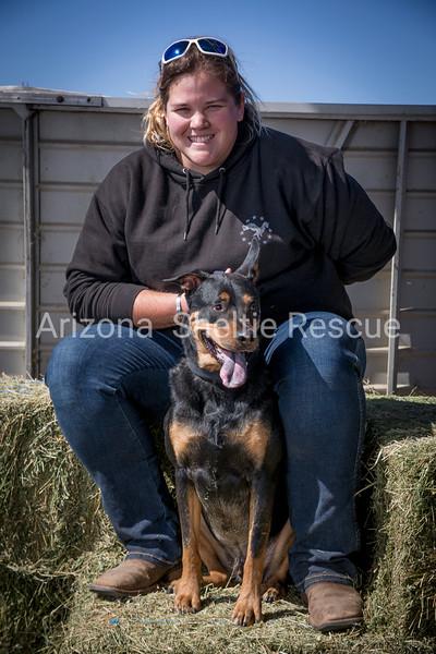 AZ Sheltie Portraits 2018 med-67