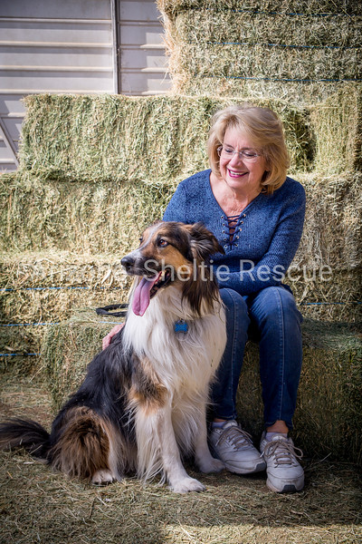 AZ Sheltie Portraits 2018 med-39
