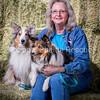 AZ Sheltie Portraits 2018 med-33