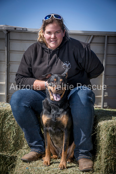 AZ Sheltie Portraits 2018 med-66