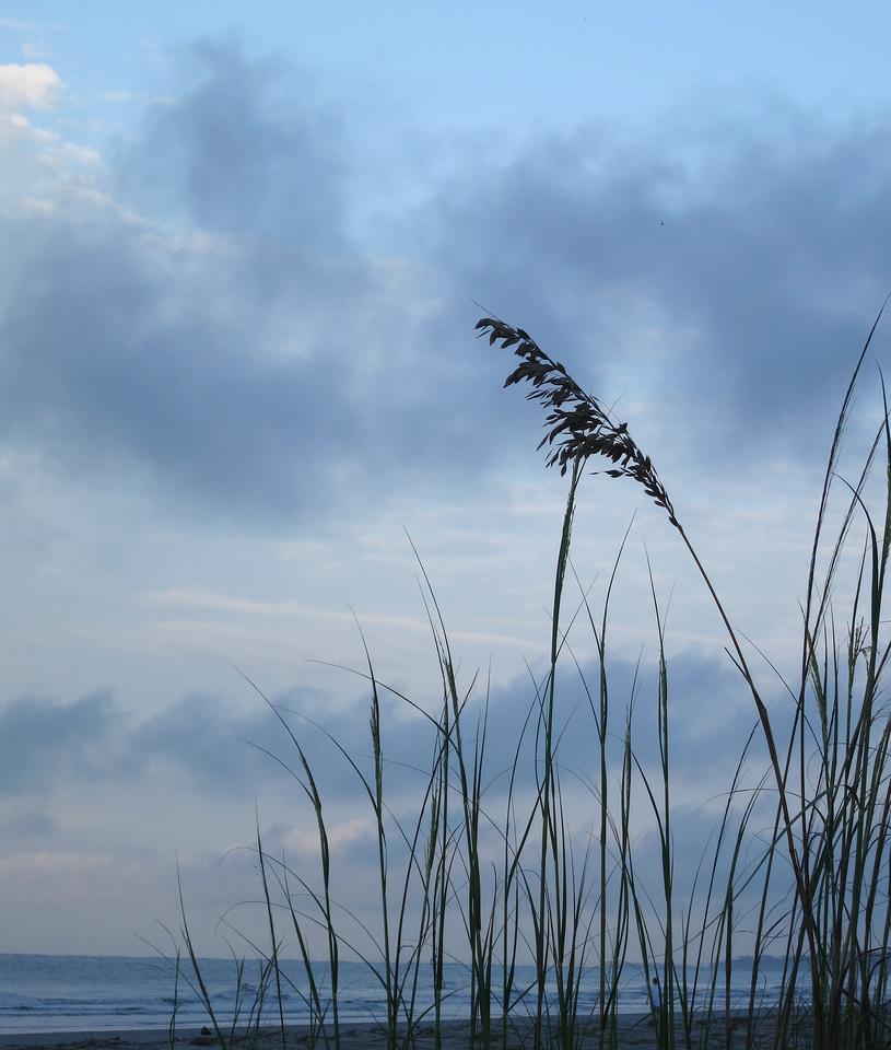 Fripp Island<br /> June 20, 2013