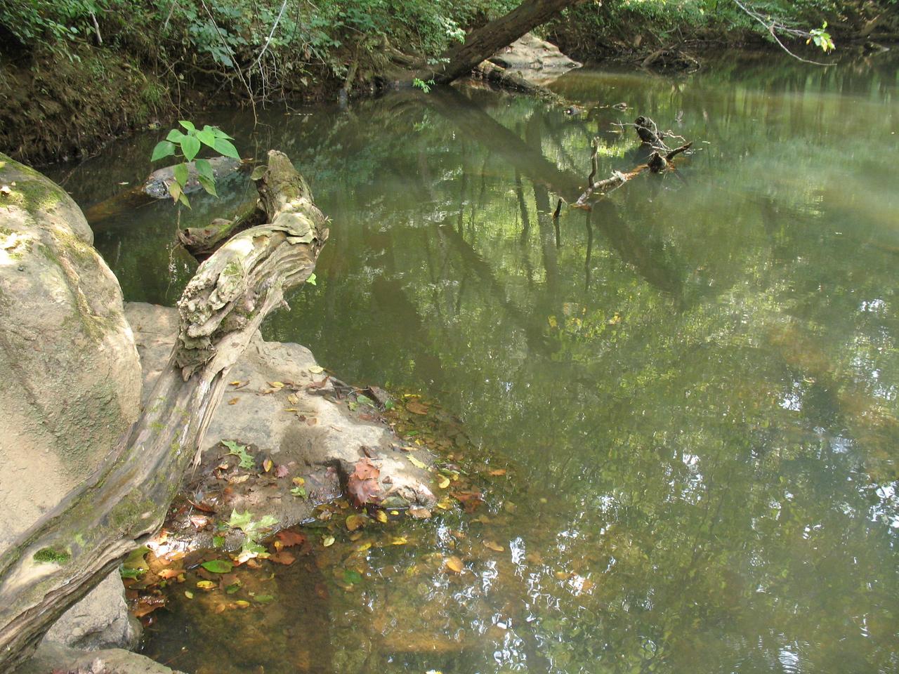 Eno River<br /> September 9, 2006