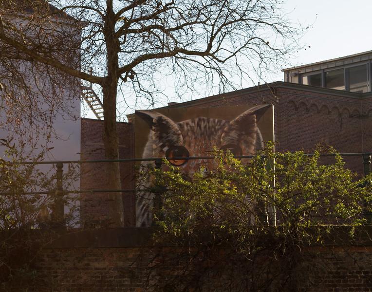 Owl Mural. Ghent, Belgium.