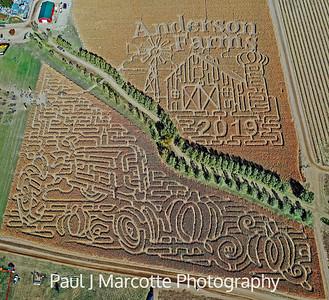 Anderson farms 2019 corn maze