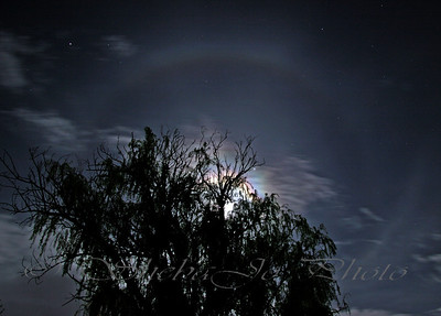 moon halo. taken with CP filter