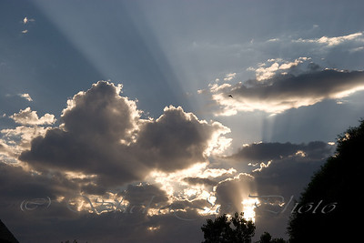 anticrepuscular rays and cloud shadows, with a bird sneaking into the shot