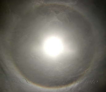 sun halo. taken with CP filter