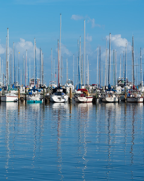 St. Petersburg, Florida.  Sailboats in the afternoon.