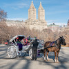 Horse and Carriage in Central Park with the San Remo in the distance.