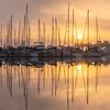 Sailboats at sunrise in St. Petersburg, Florida.
