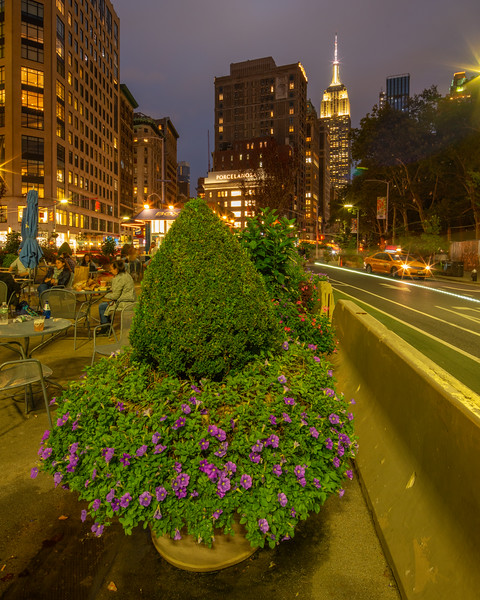 Empire State Building with flowers in the foreground.