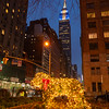 A bush on Park Avenue decorated as a dog for the holidays with the Empire State Building in the distance.
