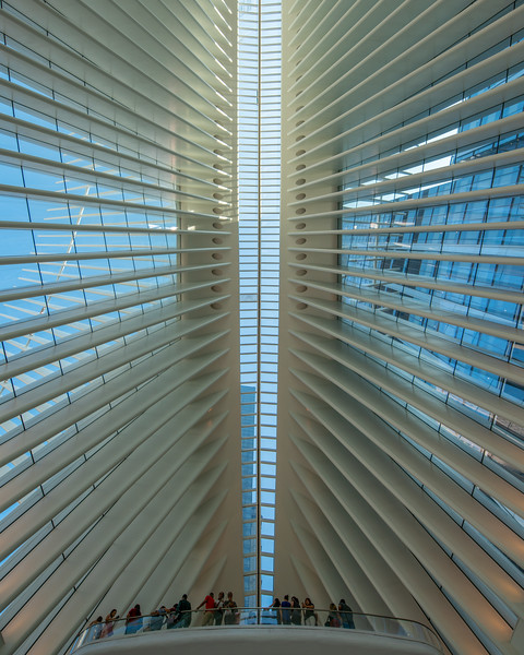 The Oculus at the World Trade Center, looking up.