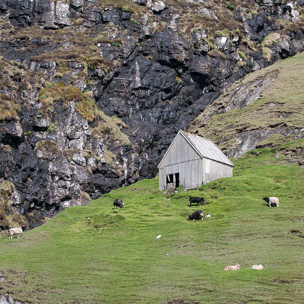 Færøerne_20110521-_BSN4930
