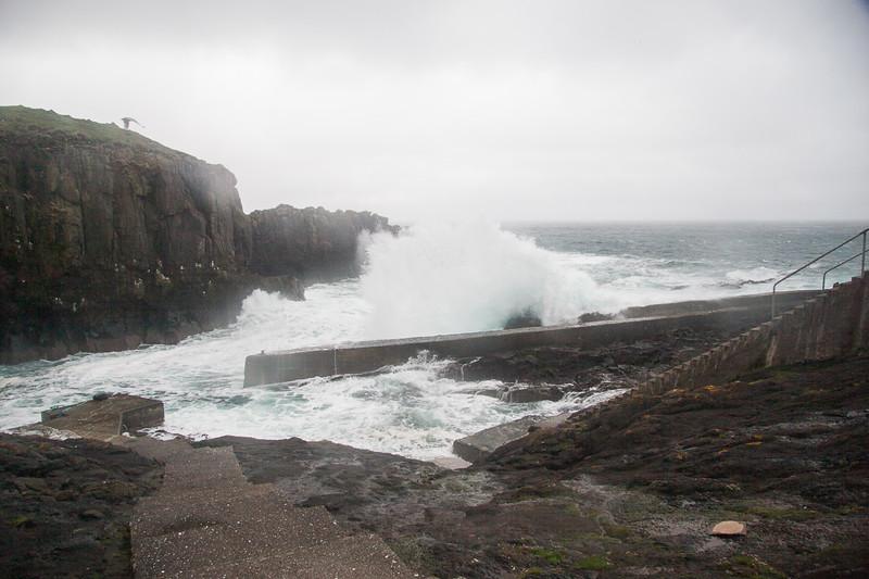 Færøerne_20110524-_MG_5223