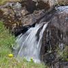 Færøerne_20110522-_MG_4976