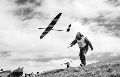 Rotmilan takes to the air