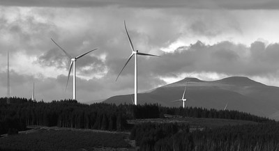 Turbines continue to proliferate alarmingly