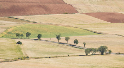 Fields, from south slope of La Muela