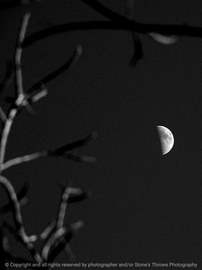 015-moon-wdsm-30jan12-001-bw-3251