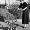 LADY WITH DOG FUNNY