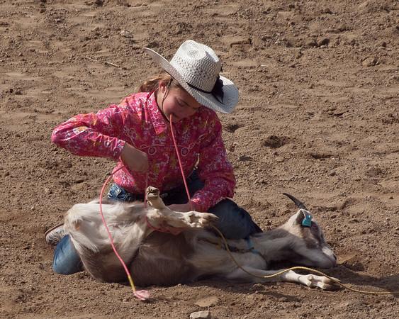 CC Horse Park April 2-3