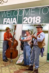 FAIA18-8807