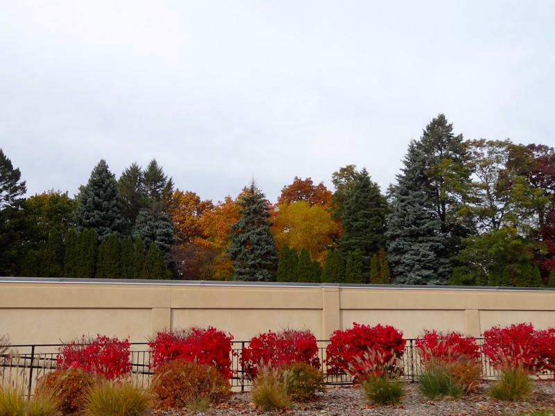 Mound Cemetery  Racine, WI