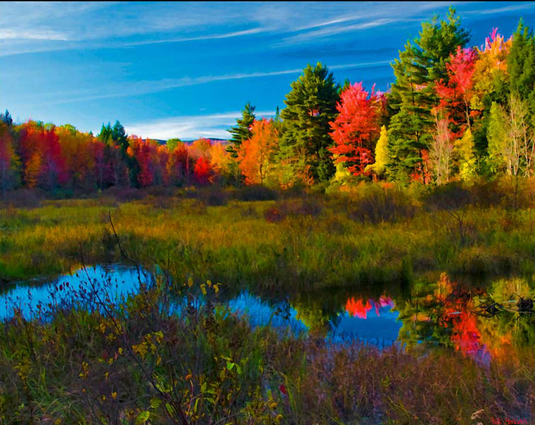 Bradford Marsh, NH