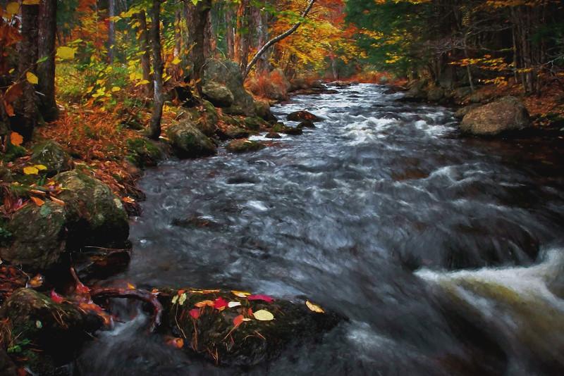 Lane River, S.Sutton, NH #2