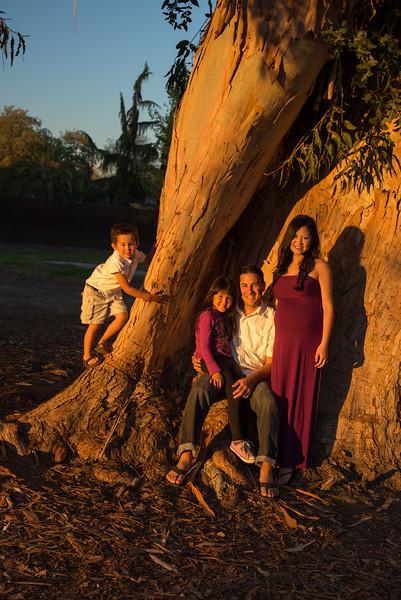 Hansen Family 2014 PROOFS