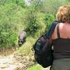 Nancy Wright & the Hippopotamus