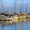 2011 Meeting - Miami, Florida - Boat Harbor