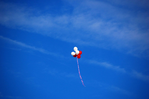 Balloons in the air_7437