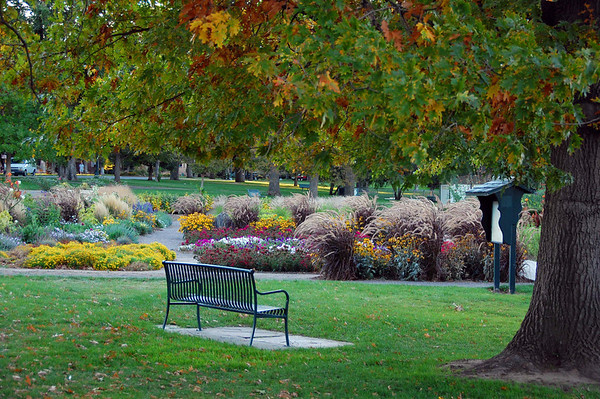 Bench at Mt Vernon Park_7245