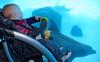 Wyatt and the Porpoise tank