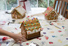 Gingerbread Houses 112517-47