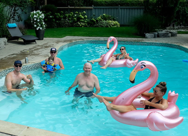 Pink Swans courtesy of Andrea. A big hit!