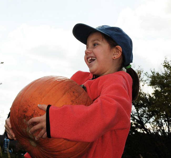 Rule for choosing a pumpkin... you MUST be able to carry it!
