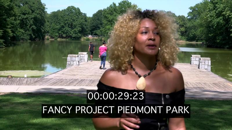FANCY PROJECT PIEDMONT PARK
