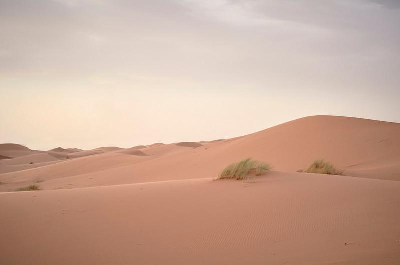 SAHARA 2 - MAROCCO SERIES