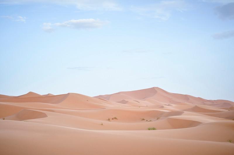 SAHARA - MAROCCO SERIES